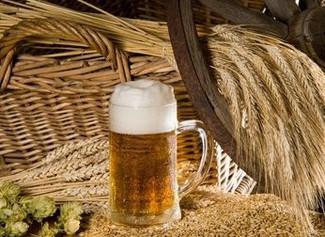 Bierglas mit Gerste und Hopfen